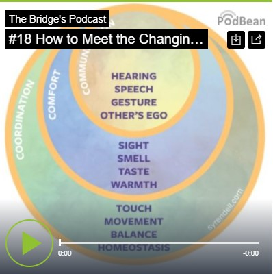 #18 How To Meet The Changing Needs Of Children: Understanding The Importance Of Our Senses – Hannah Jackson